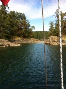 Smuggler's Cove 3